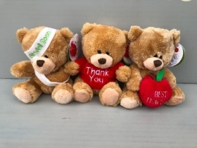 Occassion Bears 14cm
